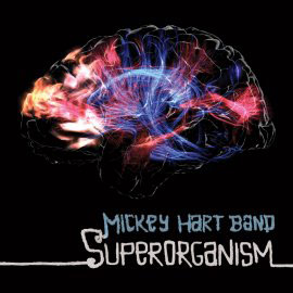 Superorganism - Mickey Hart Band